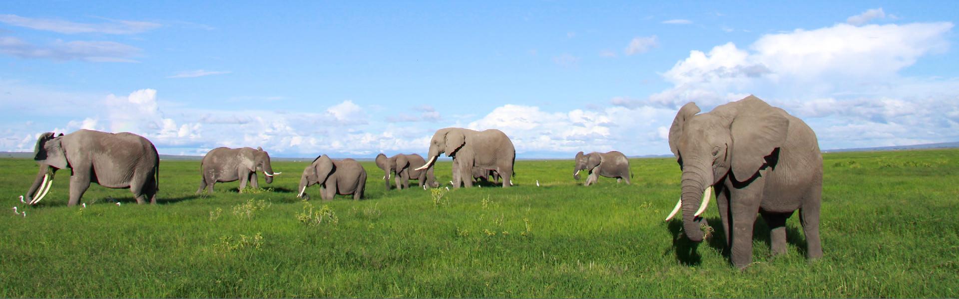 Autoreisen Südafrika