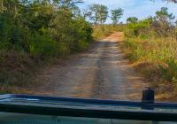 Südafrika Mietwagenreise - Südafrika & Swaziland - Natur & Tiere intensiv